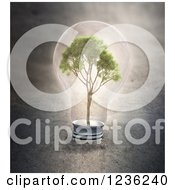 Clipart Of A 3d Tree In A Light Bulb Royalty Free CGI Illustration