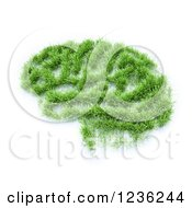 Clipart Of A 3d Grassy Brain Patch On White Royalty Free CGI Illustration
