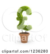 3d Pound Currency Symbol Plant In A Terra Cotta Pot