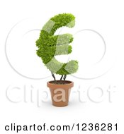 Clipart Of A 3d Euro Currency Symbol Plant In A Terra Cotta Pot Royalty Free CGI Illustration by Mopic