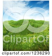 Clipart Of A 3d Meadow With Grass And Wildflowers Royalty Free CGI Illustration by Mopic