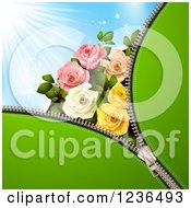 Clipart Of A Green Zipper Background Over Blue Sky With Roses Royalty Free Vector Illustration by merlinul