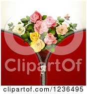 Red Zipper Background With Roses And A Butterfly