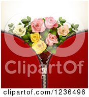 Red Zipper Background With Roses