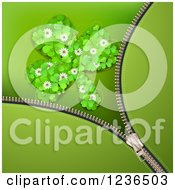 Clipart Of A Zipper St Patricks Day Background Of A Shamrocks Clover Patch Royalty Free Vector Illustration by merlinul