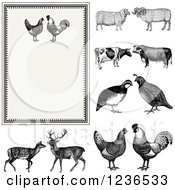 Clipart Of A Vintage Invitation With A Rooster Pair On Beige And Other Animals Royalty Free Vector Illustration by BestVector