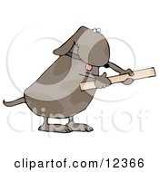 Handy Dog Using A Ruler Clip Art Illustration