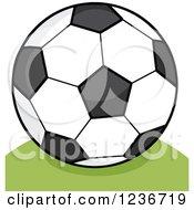 Cartoon Soccer Ball On A Hill