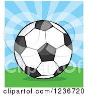 Cartoon Soccer Ball Over Rays
