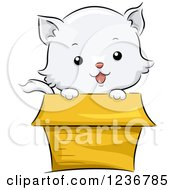 Clipart Of A Cute White Kitten Peeking Out From A Box Royalty Free Vector Illustration