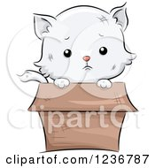 Clipart Of A Sad Cute White Kitten Peeking Out From A Box Royalty Free Vector Illustration
