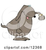 Rushed Dog Checking His Wrist Watch Clip Art Illustration