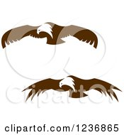 Clipart Of Flying Brown Bald Eagles Royalty Free Vector Illustration