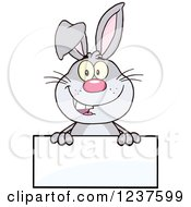 Clipart Of A Happy Gray Rabbit Over A Blank Sign Royalty Free Vector Illustration