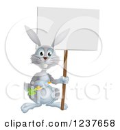Happy Gray Rabbit Holding A Carrot And Blank Sign