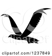Clipart Of A Black And White Eagle In Flight Royalty Free Vector Illustration