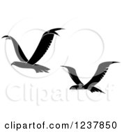 Clipart Of Black And White Eagles In Flight Royalty Free Vector Illustration