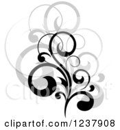 Clipart Of A Black Flourish With A Shadow 16 Royalty Free Vector Illustration
