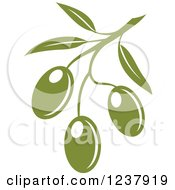 Clipart Of A Green Branch With Olives Royalty Free Vector Illustration