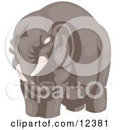 Big Elephant Clipart Illustration