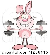 Clipart Of A Pink Rabbit Working Out With Dumbbells Royalty Free Vector Illustration