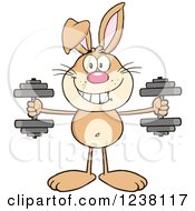 Clipart Of A Brown Rabbit Working Out With Dumbbells Royalty Free Vector Illustration