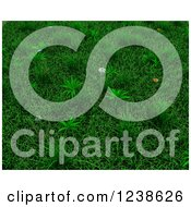 Clipart Of A Background Of 3d Green Grass And Flowers Royalty Free Illustration