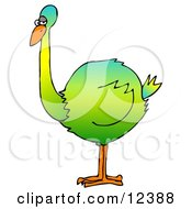 Big Colorful Green Flightless Bird Clipart Picture