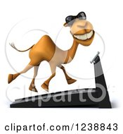 Clipart Of A 3d Camel Wearing Sunglasses And Running On A Treadmill Royalty Free Illustration