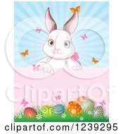 Cute White Easter Bunny Pointing Down To A Sign Over Eggs And Sunshine