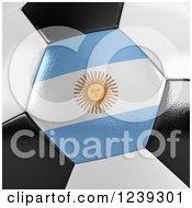 3d Close Up Of An Argentina Flag On A Soccer Ball