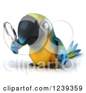 Clipart Of A 3d Blue And Yellow Macaw Parrot Looking Through A Magnifying Glass 3 Royalty Free Illustration