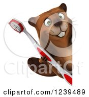 Clipart Of A 3d Beaver Holding A Toothbrush Around A Sign Royalty Free Illustration
