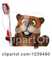 Clipart Of A 3d Beaver Holding A Toothbrush Over A Sign Royalty Free Illustration