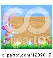 Pink Chocolate Eggs Sign Easter Bunny