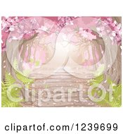 Clipart Of A Canopy Of Pink Spring Blossoms Over A Stone Path With Ferns Royalty Free Vector Illustration by Pushkin