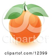 Clipart Illustration Of A Round Orange Fruit With Two Green Leaves by Leo Blanchette