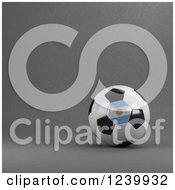 3d Argentina Soccer Ball Over Gray