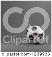 3d South Korean Soccer Ball Over Gray