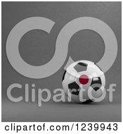 3d Japanese Soccer Ball Over Gray