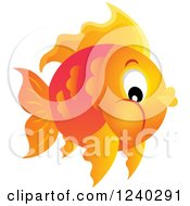 Clipart Of A Chubby Orange Fish Royalty Free Vector Illustration