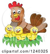 Clipart Of A Happy Mother Hen And Chicks Royalty Free Vector Illustration by visekart