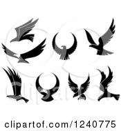 Clipart Of Black And White Flying Eagles Royalty Free Vector Illustration
