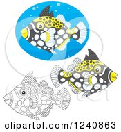 Clipart Of Black And White And Colored Clown Triggerfish Royalty Free Vector Illustration