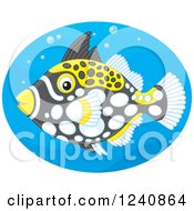 Clipart Of A Clown Triggerfish In A Blue Oval Royalty Free Vector Illustration by Alex Bannykh