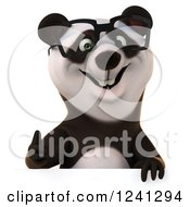 Clipart Of A 3d Bespectacled Panda Giving A Thumb Up Over A Sign Royalty Free Illustration