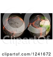 3d Model Of Earths Fault Lines And Tectonic Plates