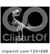 Clipart Of A 3d Skeleton Of A Tyrannosaurus Rex On Black Royalty Free Illustration