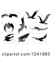 Clipart Of Black And White Flying Eagles 2 Royalty Free Vector Illustration