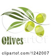 Clipart Of A Green Branch With Olives And Text Royalty Free Vector Illustration